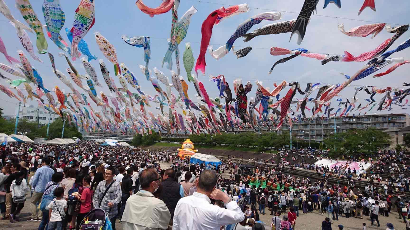 Bạn đã biết gì về lễ hội Koinobori Matsuri, Nhật Bản?- Góc của mẹ - Apollo  English